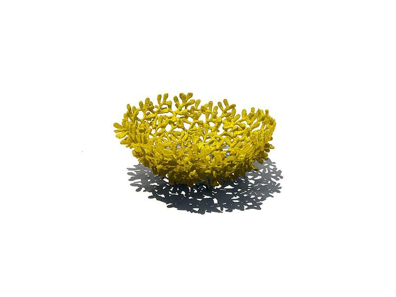 Acaú Fruit Bowl Round